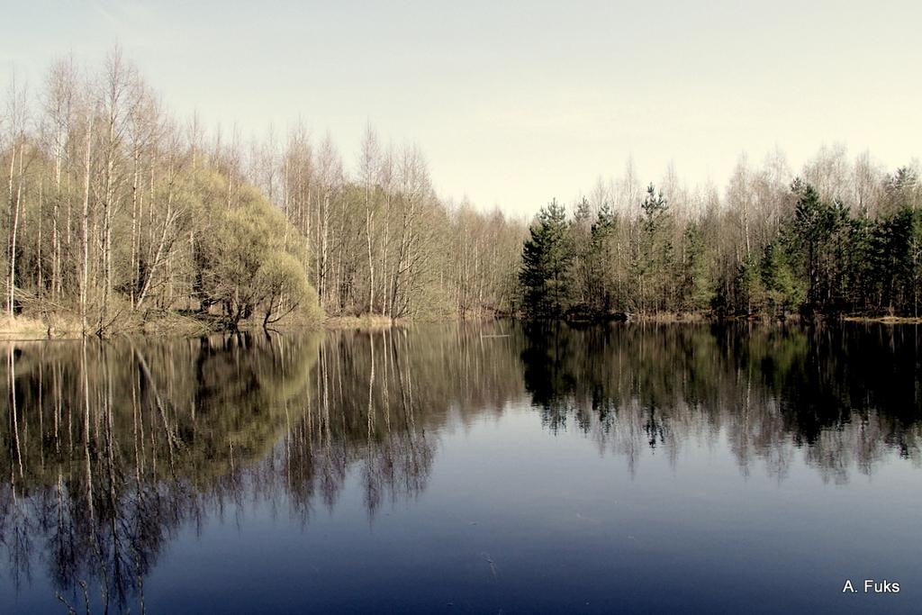 Пейзаж — Весна