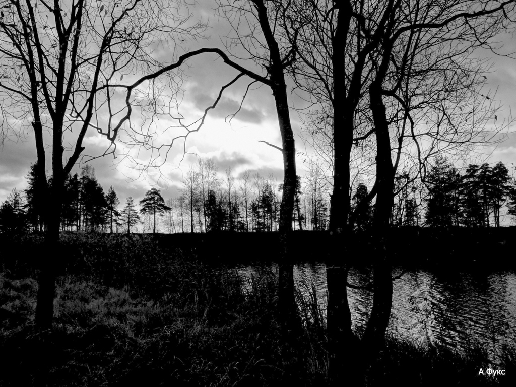 Пейзаж — Осень, ночь