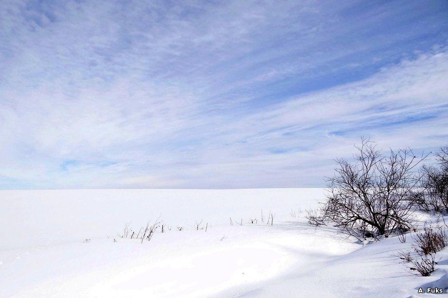 Пейзаж — Поле