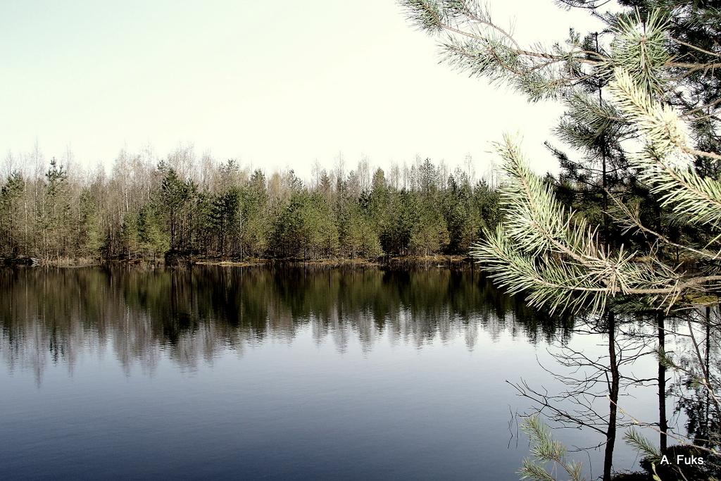 Пейзаж — фото
