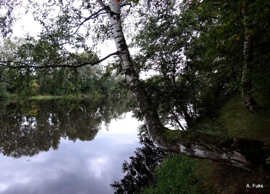 река Мга