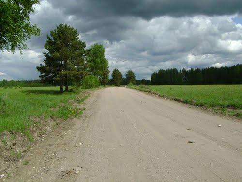 дорога в никольское