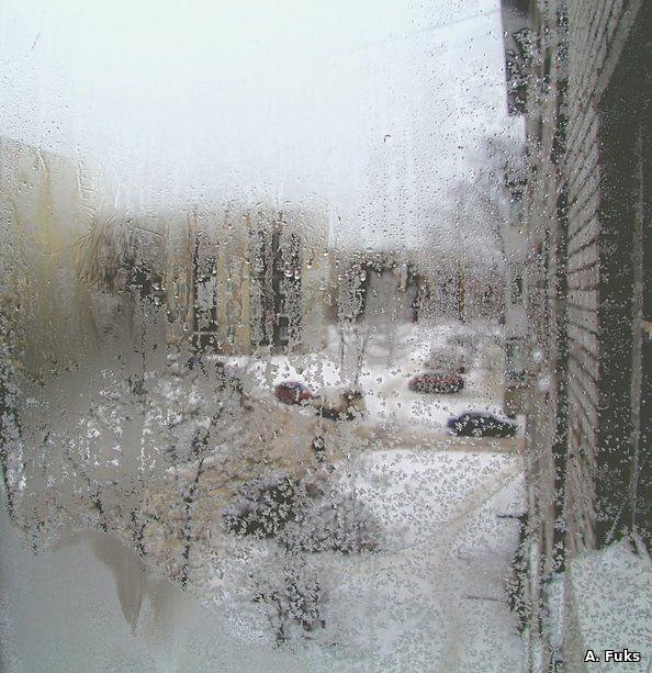 Ассорти — Двор из окна