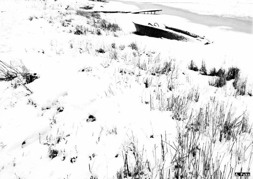 Ассорти — На берегу