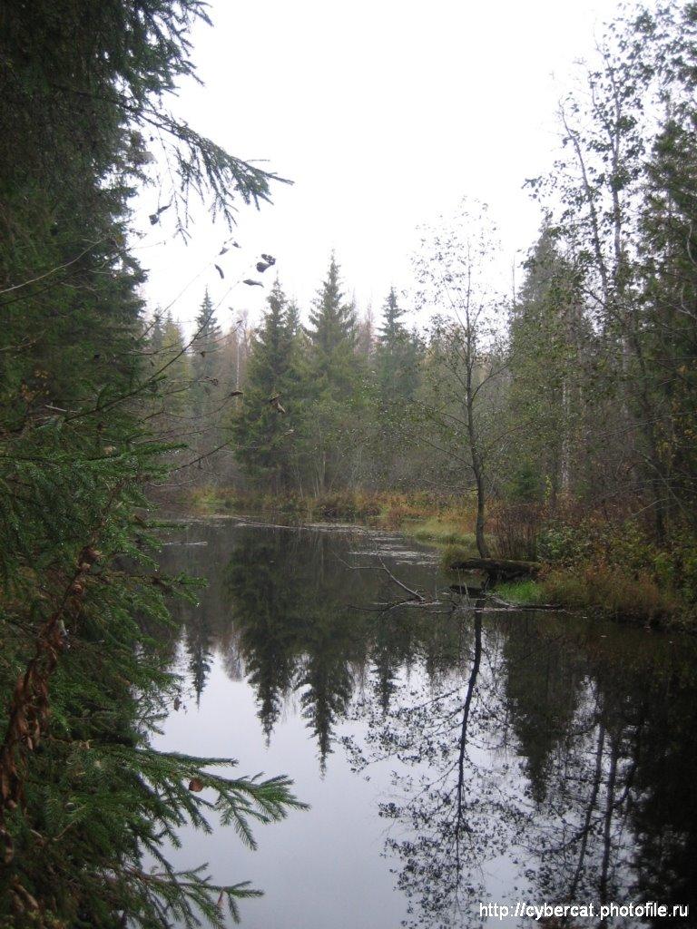 река обломна