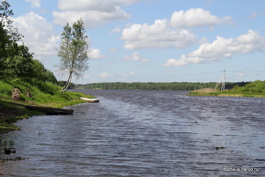 Устье реки Мга